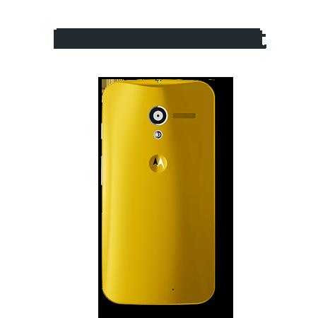 Drunken-hornet